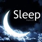 Sleep Playlist de Various Artists