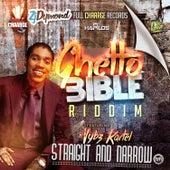 Straight & Narrow - Single by VYBZ Kartel