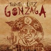Tributo a Luiz Gonzaga von Banda Plinta