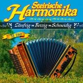 Steirische Harmonika - Zünftig - Fetzig - Schneidig - 32 Titel van Various Artists