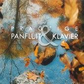 Pragtige Panfluit & Klavier de Verskeie Kunstenaars