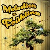 Melodien im Frühling de Various Artists