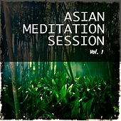 Asian Meditation Session, Vol. 1 (Best Asian Inspired Chill out and Meditation Music) de Various Artists