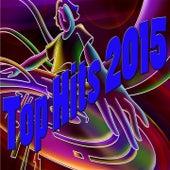 Top Hits 2015 von Various Artists