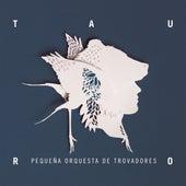 Tauro by Pequeña Orquesta de Trovadores