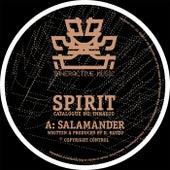 Salamander / Holding Back by Spirit