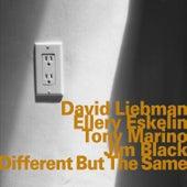 Different but the Same von Ellery Eskelin