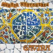 Mosaic D'Havaneres von Grup Gavina