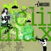 Climax von Molecule