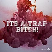 Trap Music (2015) by Various Artists