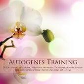Autogenes Training - 50 Entspannungsmusik, Meditationsmusik, Tiefentspannungsmusik für Gesunder Schlaf, Erholung und Wellness von Entspannungsmusik