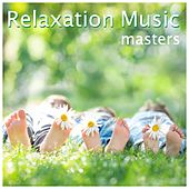 Relaxation Music Masters: Soothing Music for Meditaton and Stress Relief by Soundscapes Relaxation Music Academy