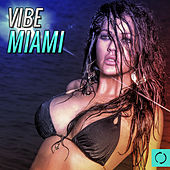 Vibe Miami by Various Artists