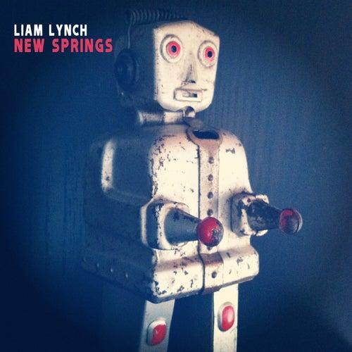 New Springs by Liam Lynch