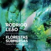 Florestas Submersas by Rodrigo Leão