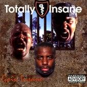 Goin Insane by Totally Insane