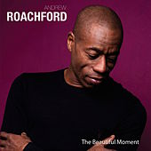 The Beautiful Moment by Andrew Roachford