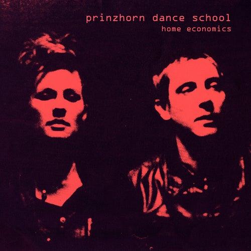 Home Economics by Prinzhorn Dance School