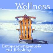 Wellness - Entspannungsmusik zur Erholung (Sanfte Klaviermusik zur Beruhigung und Entspannung, Anti Stress, Yoga, Pilates und Meditation) by Various Artists