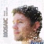 Mosaic de Isaac Shepard