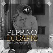 Non Siamo Più Insieme by Peppino Di Capri
