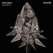 Stone Flower de Adam Beyer