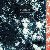 Moonlit Invocations by Fjordne