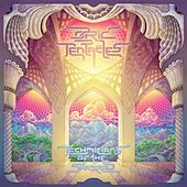 Technicians of the Sacred von Ozric Tentacles