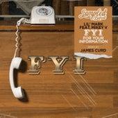 FYI (feat. Mikey V) by Derrick Carter