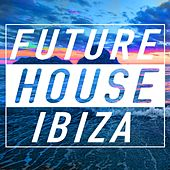 Future House Ibiza by Various Artists