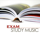 Exam Study Music - Best Homework Songs for Studying and Deep Concentration by Various Artists