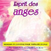 Esprit des anges: musique en continu pour thérapie d'ange de Chris Conway