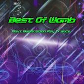 Best Of Womb de Various Artists