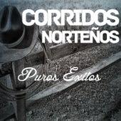 Corridos Nortenos Puros Exitos: Enamorado Otra Vez, Besame, La Ultima Vez, El Cisne by Various Artists