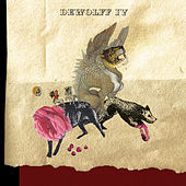 DeWolff IV van Dewolff