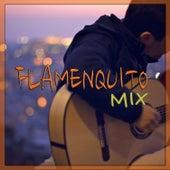 Flamenquito Mix de Various Artists