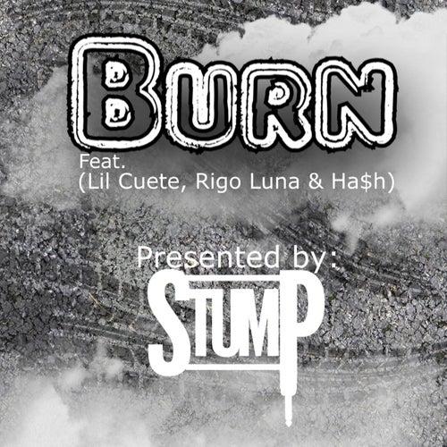 Burn (feat. Lil Cuete, Rigo Luna & Ha$H) by Stump