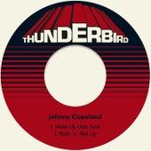 Wake up Little Susie de Johnny Copeland