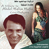 A Tribute to Abdel Halim Hafiz: Instrumentals of the Egyptian Legend de Cairo Orchestra