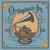 Orthophonic Joy: The 1927 Bristol Sessions Revisited von Various Artists