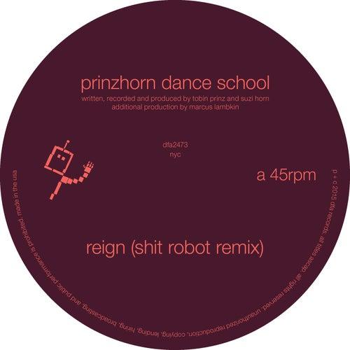 Reign (Shit Robot Remix) by Prinzhorn Dance School
