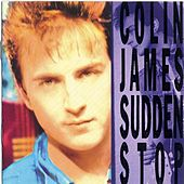 Sudden Stop de Colin James