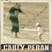 Zeit, die ich vermisse von Carly Peran