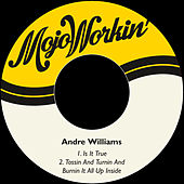 Is It True von Andre Williams