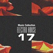 Music Collection. Electro House 17 by Various Artists