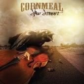 Slow Street by Cornmeal