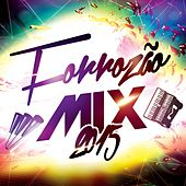 Forrozão Mix 2015 de Various Artists