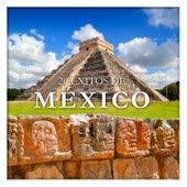 20 Éxitos de México van Various Artists