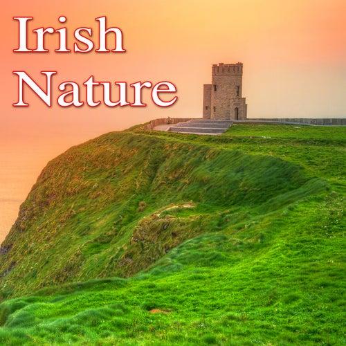 Irish Nature by Nature Lounge