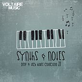 Synths and Notes 22 by Various Artists